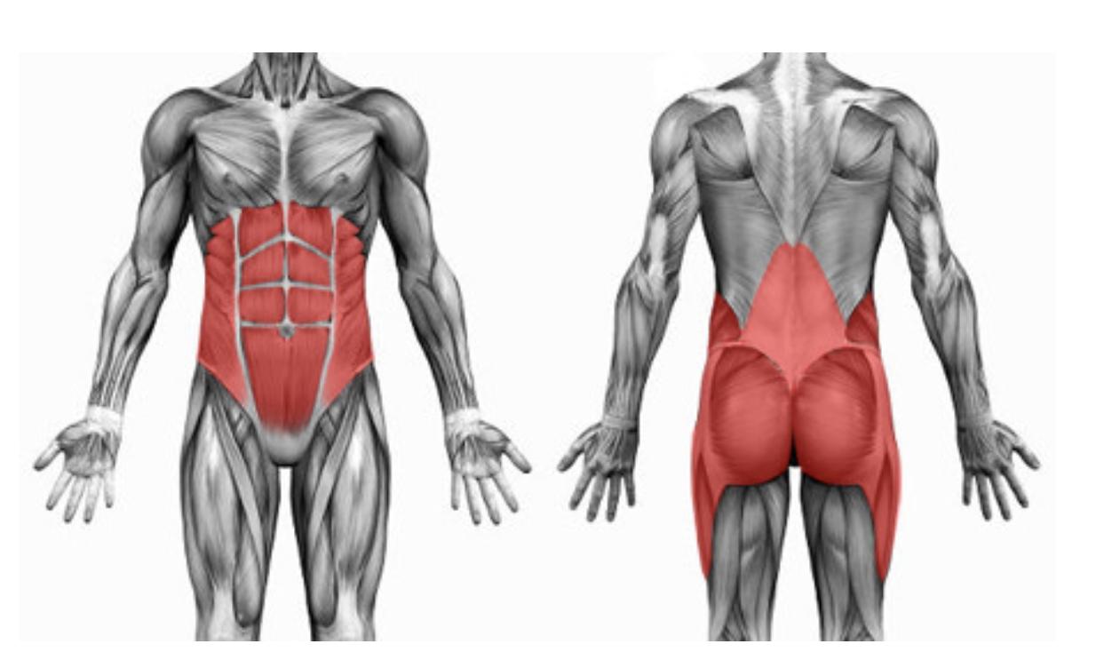 rinforzo del core mal di schiena